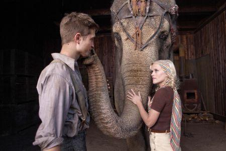 Wasser für die Elefanten
