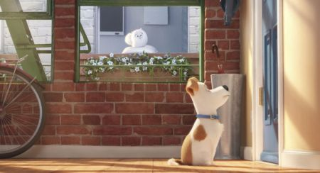 Pets (The Secret Life of Pets)